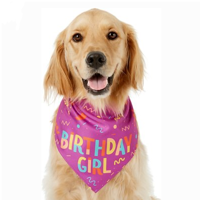 Chewy: Buy 3 Get 15% OFF on Supplies, Apparel, Toys and More